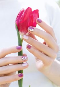 female-hands-with-purple-nail-design-holding-beautiful-pink-tulip